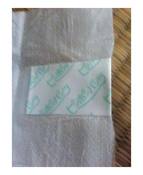 古い紙おむつ ピンポンパンツ Lサイズ3